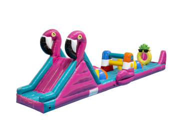 Flamingo run